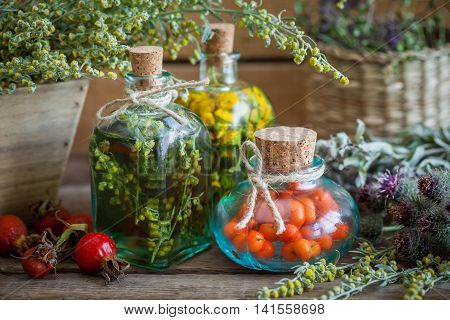 Tincture Bottles Of Tansy, Tarragon Healthy Herbs And Rowanberries, Healing Herbs In Wooden Box. Her