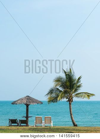deckchairs sea and palms very beautiful nature in summer
