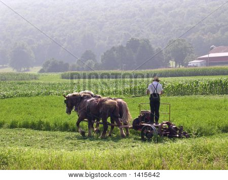 An Amish Workday