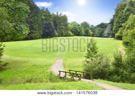 Idyllic colf course with wooden bridge. Summer scene with green meadow, forest and blue sky.
