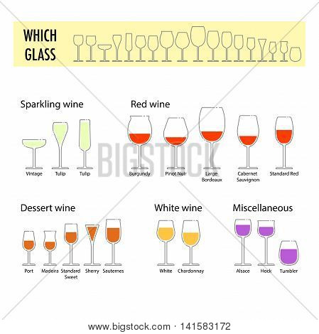 Typography poster for wine tasting. Flat different glasses for wine. How to choose a glass for different wine. Information poster for wineries or wine shop