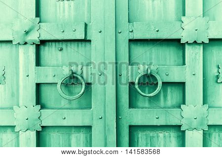 Metal green aged textured door with rings door handles and metal details in form of stylized flowers. Metal architecture background. Vintage filter applied