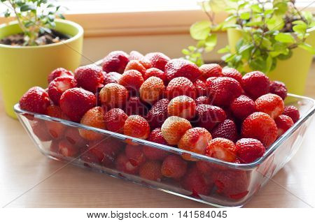 Glass plate full of fresh red strawberries