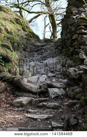 A typical rocky path in the Lake District above Rydal water