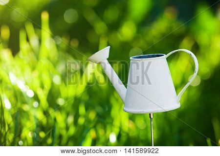 Watering Can, Outside