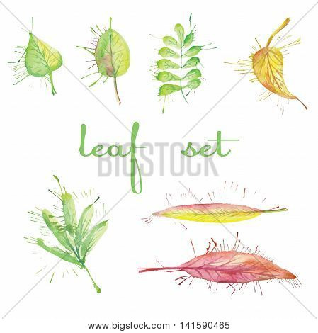 a small set of different abstract watercolor leaves