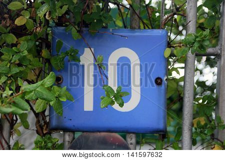 blue square metal number plate with the number ten among the green foliage in summer