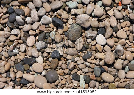 texture of beautiful wet round colored sea pebbles on pebble beach foreground closeup