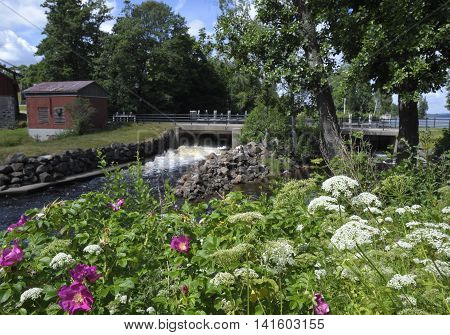 Outlet from a little water power plant and with summer flowers in foreground picture from the North of Sweden.