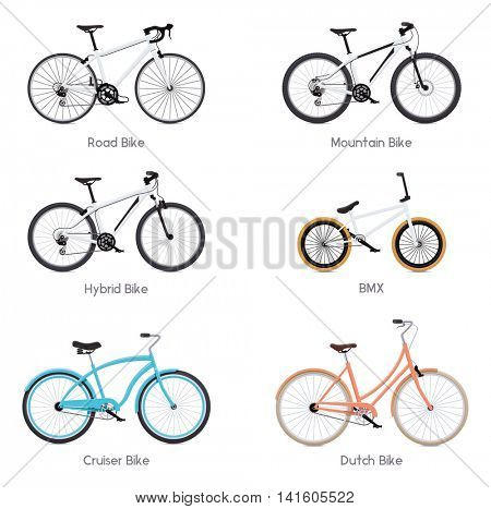 Set of the different vector bicycles - road bike, bmx, mountain bike, hybrid, cruiser bike and Dutch bicycle