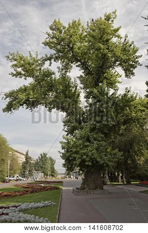 VOLGOGRAD - AUGUST 6: Natural and historical monument