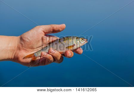 Fisher man holding in his hand caught  fish on the background of the river.