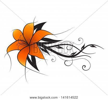 Vector illustration of orange lilies, vintage decoration flowers