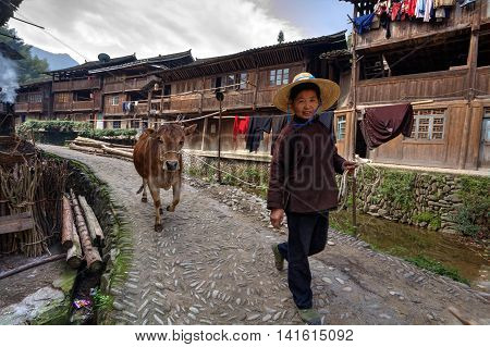 Zhaoxing Dong Village Guizhou Province China - April 9 2010: Asian woman in wide-brimmed straw hat goes on a rural Street while on the rope red cow.