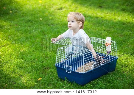 Cute little boy stroking a pet rabbit in a cage outdoors
