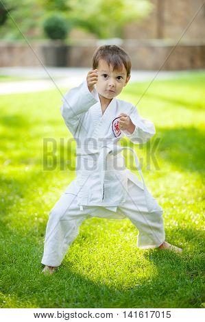 Preschool boy practicing karate standing on green grass