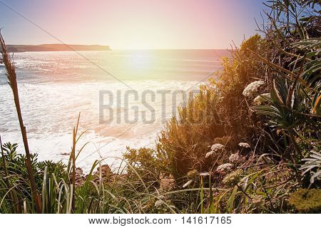 View of the ocean from the abrupt coast with a grass. Spain Suances summer day in the Province of Cantabria stylization under kontrovy light of the sun from the ocean