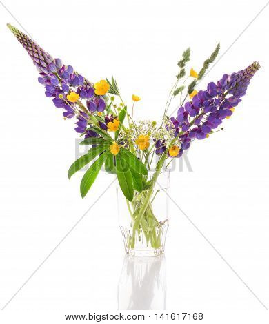 Bouquet of wild flowers on a white background. A violet lupine and green leaves in a glass vase jug