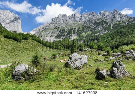 Idyllic mountain landscape in the austrian alps. Wilder Kaiser Tyrol.