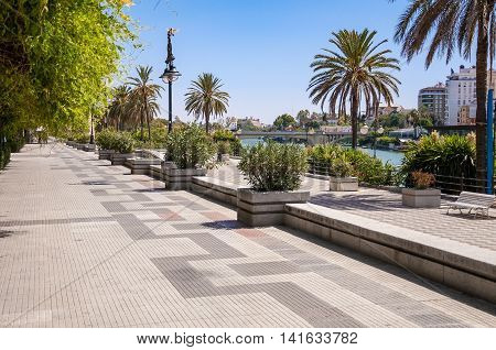 Alley called Paseo Alcalde Marques del Contadero in Seville Spain