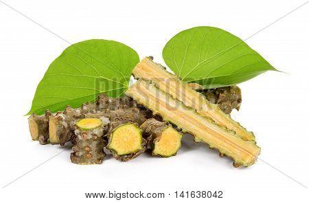 Tinospora Cordifolia Herb Isolated