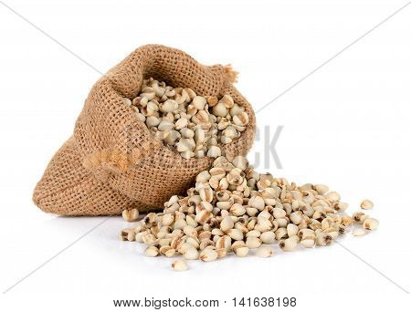 Millet Rice , Millet Grains Wiht Sack Isolated