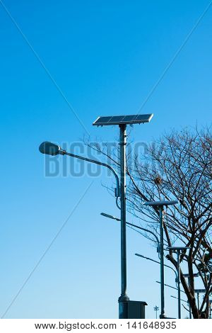 Solar lamp post on the blue sky and the tree in the background