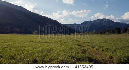 Mountain Meadows under early morning cumulus clouds in Central Rocky Mountains in Alpine Wyoming US