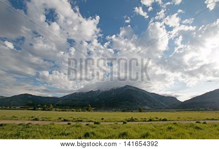 Mountain Meadows in Central Rocky Mountains in Alpine Wyoming USA