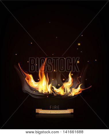 Vector burning fire on a dark (night) background.