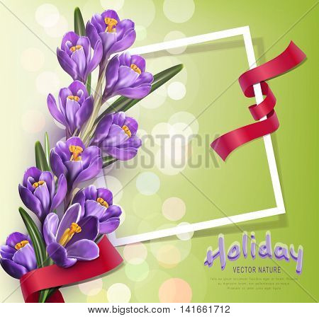 Vector greeting card with blue crocuses , frame, red ribbon and place for text on a green background