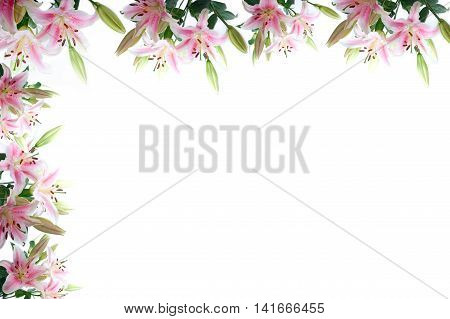Lily Flowers Composition Frame