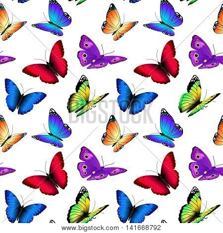 Seamless vector pattern with butterflies. Illustration of pattern with colored butterfly, summer butterflies flying