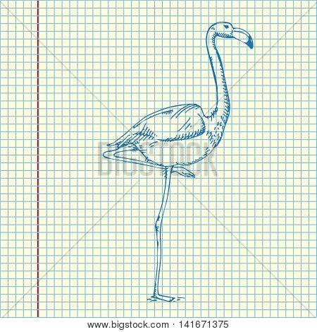 Cool Flamingo Design