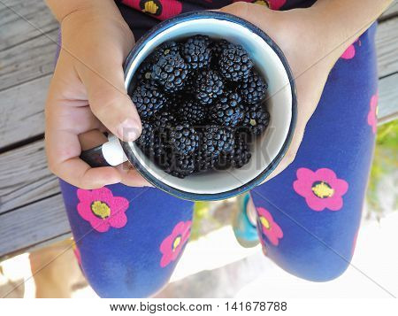 Little Girl Holding a Cup of Ripe Blackberries on Her Knees