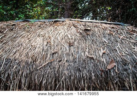 thatched roof at the hut in the countryside of Thailand