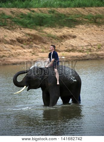 Mahouts westerner bath for young elephants in the river.