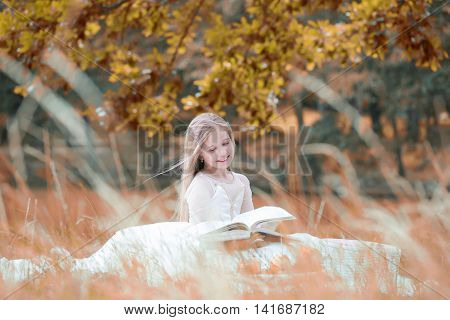 Small Girl In Dress With Fruit Basket And Book