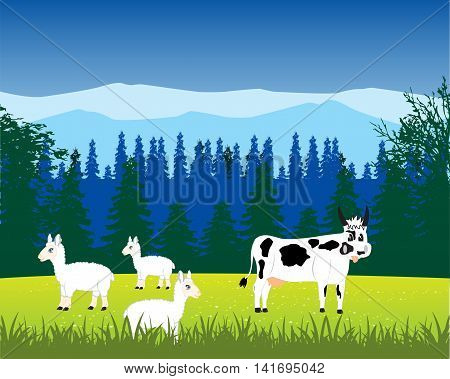 The Livestock to bemoan on alpine meadow.Vector illustration