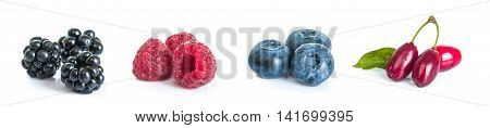 collection set of forest whole berries closeup macro isolated on white background