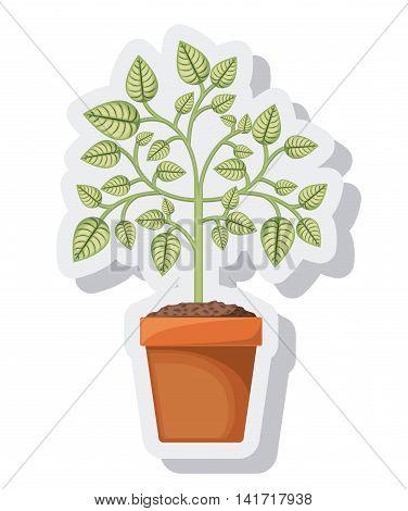 tree plant pot isolated icon vector illustration design