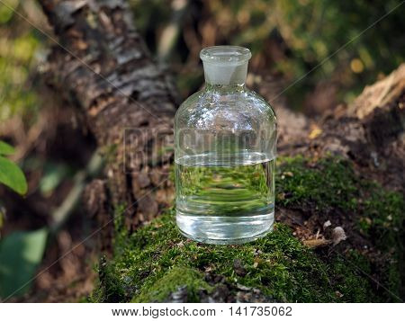 Water in the bottle. Forest moss. Reflection