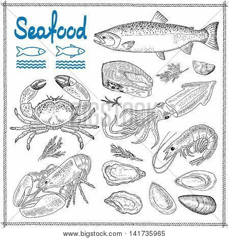 Hand drawn seafood set of vector sketches. Vintage design with seafood illustration. Elements for menu bars and restaurants, banner, flyer, card.