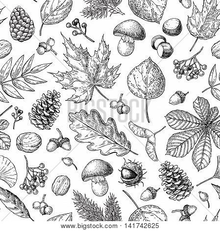 Autumn seamless vector pattern with leaves berries fir cones nuts mushrooms and acorns. Detailed forest botanical background. Vintage fall seasonal decor. Oak maple chestnut leaf drawing.
