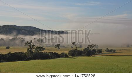 Autumn scene near Wauchope New South Wales. Morning fog over rural landscape.
