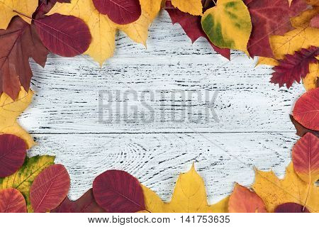 Autumn concept. Autumn leaves over wooden background. With copy space