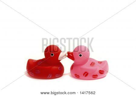 Two Ducks Kissing White