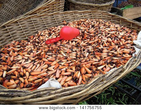 Close-up of piñones in a wooden basket with a red shovel, a seed of a typical tree in Chile, traditional food
