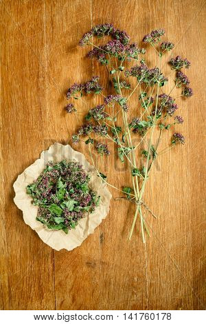 Oregano.Dried herbs for use in alternative medicine.Herbal medicine phytotherapy medicinal herbs.For preparation of infusions decoctions tinctures powders ointments tea.Background wooden board