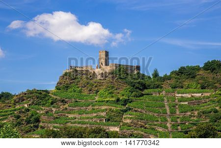 Castle Ruins On The Moselle And Vineyards